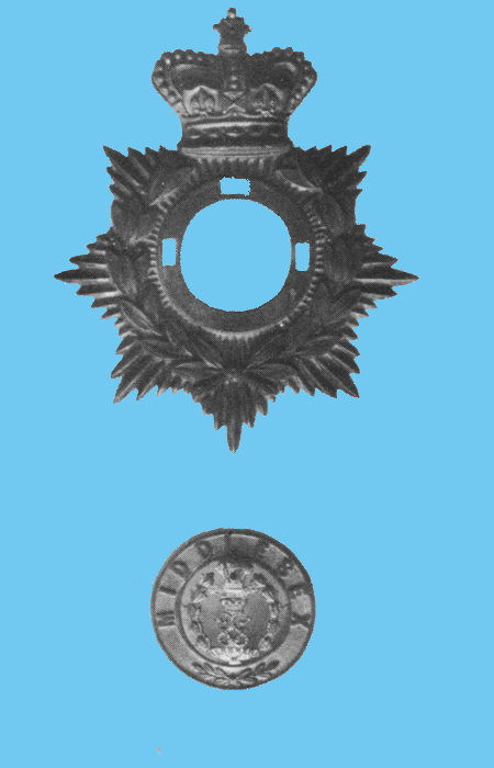 An example of an Other Rank's two piece helmet plate. There were from two to four lugs to the rear of the centre piece corresponding to the holes in the backing plate. When four lugs are present the fourth is in the centre of the device.